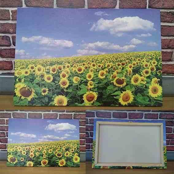 Картины на холсте от компании Ультрапринт